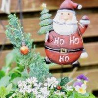 クリスマスの寄せ植え|上手な作り方のコツとおすすめ草花とは?の画像