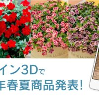 サントリーフラワーズ2021年春夏商品紹介!3Dマップで覗いてみよう![PR]の画像
