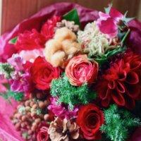 クリスマスの花といえば?プレゼントにもおすすめな植物10選の画像