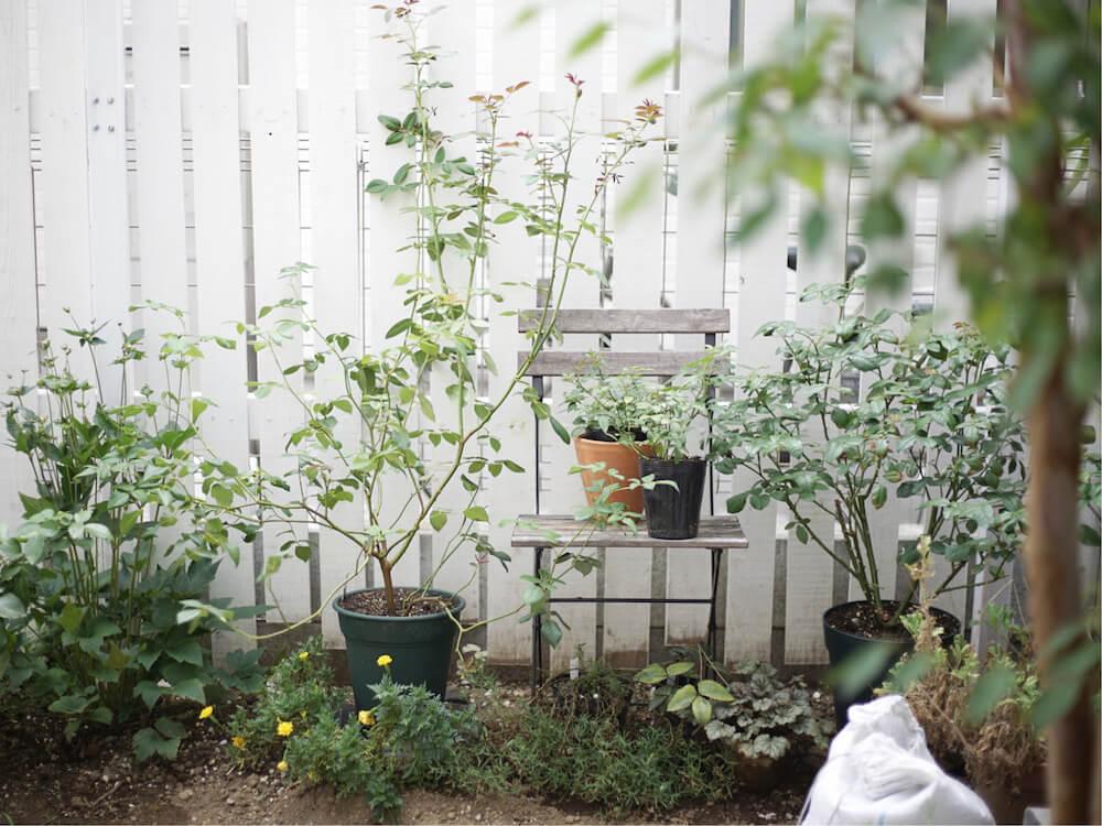 庭 おしゃれ