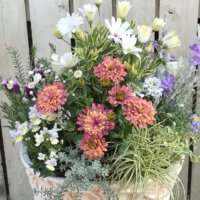 春の寄せ植え|おすすめの草花10選とおしゃれな組み合わせのアイデア!の画像