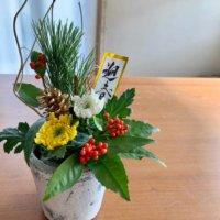 お正月に飾りたい植物15選!アレンジメントをお正月らしくするコツは?の画像