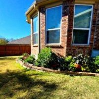 芝生の張り方・植え方|庭に簡単に張る方法は?庭土の整え方は?の画像