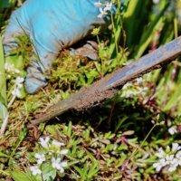 畑やお庭の雑草に!草消滅シリーズですっきり菜園ライフを送ろう♫の画像