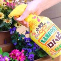植物の害虫・病気対策はロハピ!99%食品成分で安全なのに効果抜群のヒミツとは?の画像