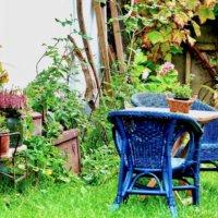 憧れの芝生のお庭!キレイに保つためのお手入れ方法とは?の画像