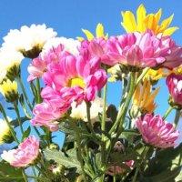 お盆にお供えする花|マナーや避けるべき花、おすすめは?の画像