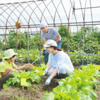 ここちいい菜園ライフを♪畑サイクルとhataのアイテムで家庭菜園を楽しもう!の画像