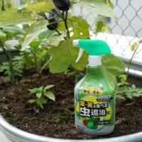 秋冬野菜の虫退治に!収穫前日まで使える「ベニカAスプレー」で野菜や植物を守ろうの画像