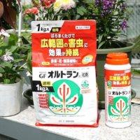 害虫防除の強い味方「オルトラン粒剤」!長く愛されている理由とはの画像