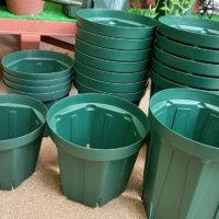 スリット鉢は機能性抜群!根張り効果や向いている植物は?の画像